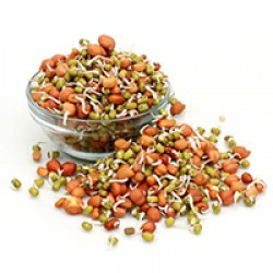 Health Benefits of Sprouts Grains in Hindi